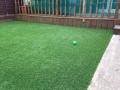 Houghton grass job 1